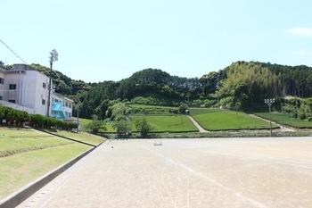kikukawa-1.jpg